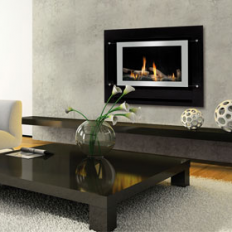 Neo Gas Fire Inbuilt with Simple Remote - FREE FLUE!