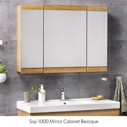 Bathroom Cabinets Nz bathroom cabinets nz - mirror & wall cabinets   plumbing plus