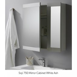 Bathroom Cabinets NZ - Mirror & Wall Cabinets | Plumbing Plus